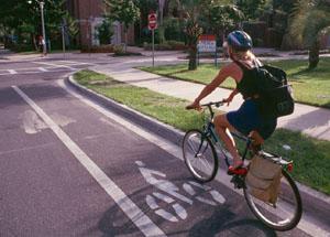 Survey: GA Bicycle Safety Action Plan